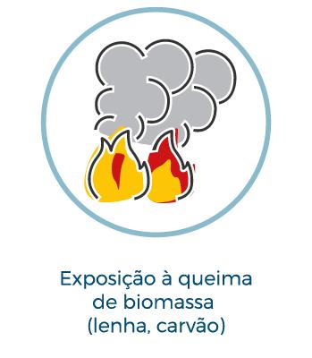 Exposição a queima de biomassa